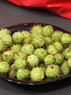 Baby Conkers, pic #8