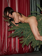 Queensnake decorates and plays with her Christmas Tree, gets her pussy whipped..