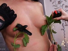 Queensnake is playing with her BDSM virgin girlfriend, Tanita and taking her..