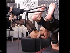A rainbow of assorted caning devices shine on Queensnake's soles, radiating..