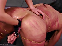 Sharon wraps several dozens of thick rubber bands around Queensnake, carefully..